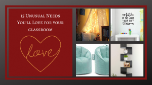 15 Unusual Needs You'll Love for Your Classroom